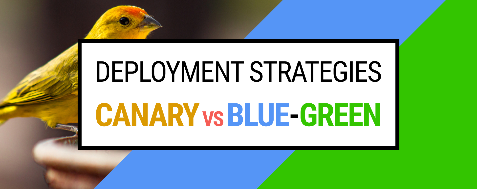 Software Deployment Strategies: Canary vs Blue-Green